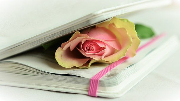 Закладка - подарок книголюбу