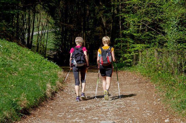 Палки для скандинавской ходьбы - что подарить дачнику