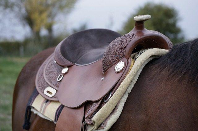 Седло - подарок любителю лошадей