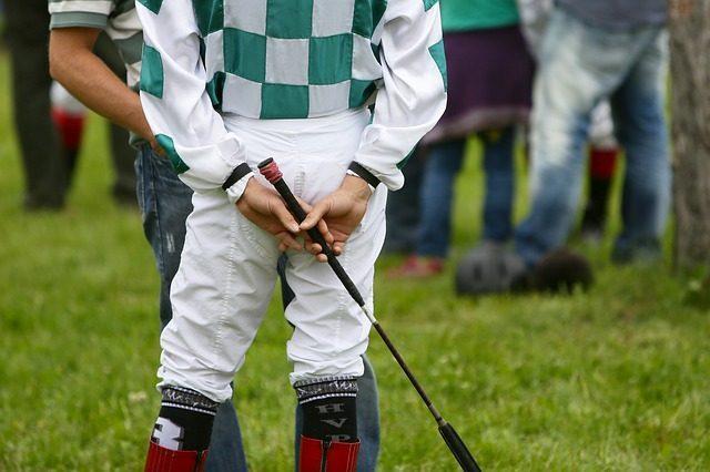 Хлыст - подарок любителю лошадей