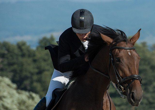 Жокейка - подарок любителю лошадей