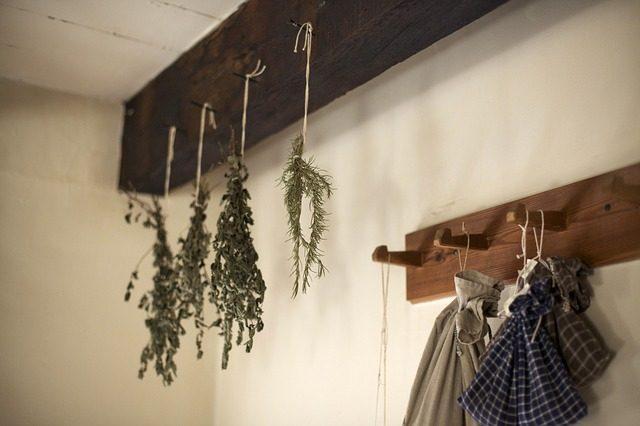 Интересные травы - Какие специи подарить в дом