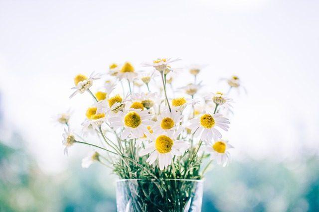 Цветы иконфеты - Что подарить вбольницу