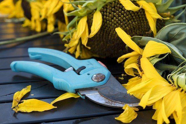 Садовые инструменты - Что подарить цветоводу