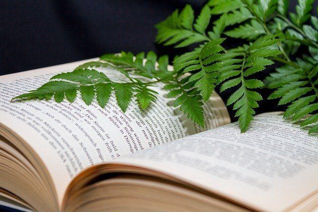 Книги о цветоводстве - Что подарить цветоводу