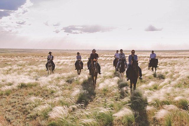 Прогулка на лошадях - идея подарка Подариок